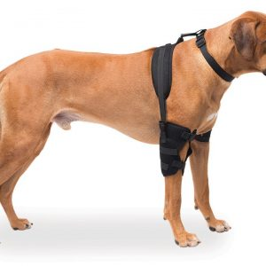 Large Elbow Pet Therapy Wrap with Therapy Gel