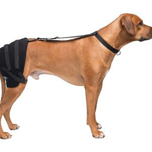 Large Hip Pet Therapy Wrap with Therapy Gel