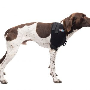 Medium Shoulder Pet Therapy Wrap with Therapy Gel