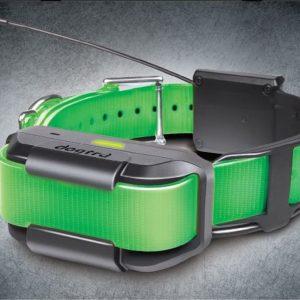 Pathfinder Extra Collar green