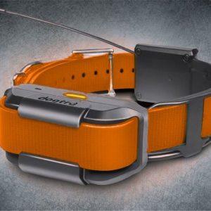 Pathfinder Extra Collar orange