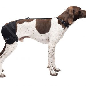 medium hip pet therapy wrap with therapy gel