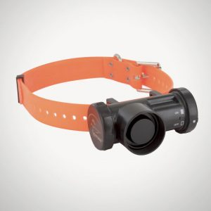 Sport Dog dsl 400 beeper
