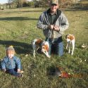Intact Male and Female Brittany Spaniel