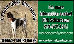 cedar creek gun dogs